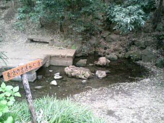 竹林公園の湧き水