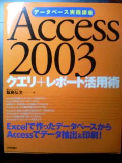 Access活用術