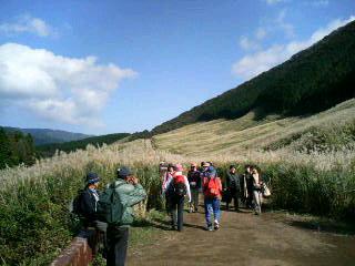 仙石原散策路