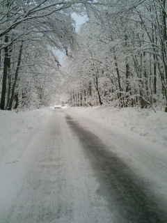 東北の旅4 白い道
