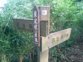 高尾山口〜めじろ台ウォーキング