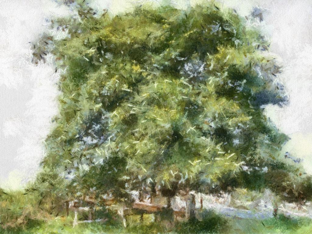 【今月のうた】『ムクロジの木』他 (2014年)
